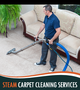 home carpet cleaners